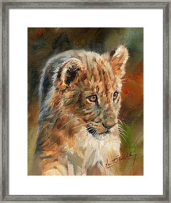 Framed Print featuring the painting Lion Cub Portrait by David Stribbling