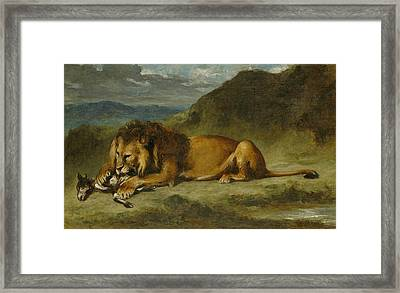 Lion Devouring A Goat Framed Print by Eugene Delacroix