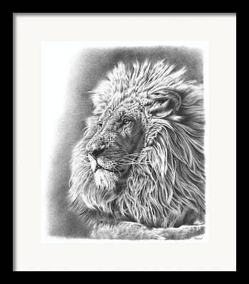 Black Cat Drawings Framed Prints