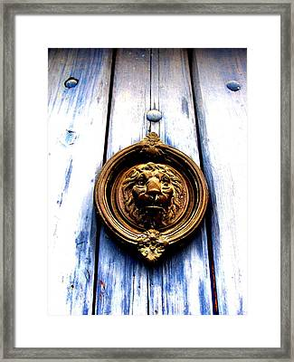 Framed Print featuring the photograph Lion Dreams by Michelle Dallocchio