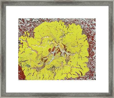 Lion Flower Framed Print