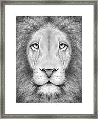 Lion Head Framed Print by Greg Joens