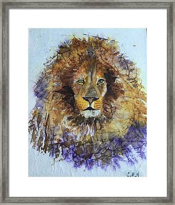 Lion Head Framed Print