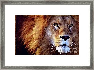 Lion-hearted Framed Print