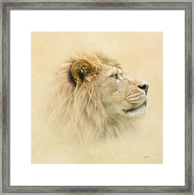 Framed Print featuring the photograph Lion II by Roy  McPeak