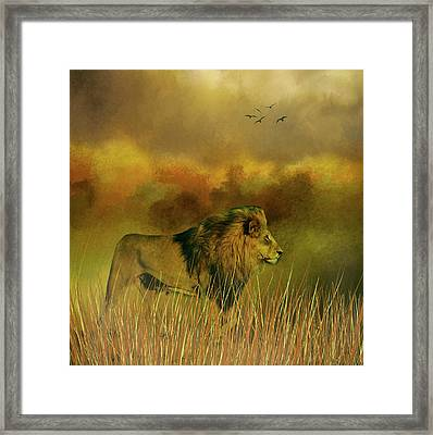 Framed Print featuring the photograph Lion In The Mist by Diane Schuster