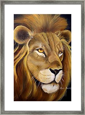 Lion Male Framed Print by Ansie Boshoff