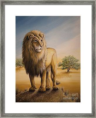 Lion Of Africa Framed Print