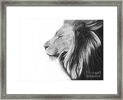 Lion Of Judah Framed Print by Bockes Fine Art