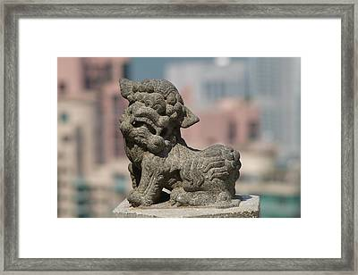 Lion On The Peak Framed Print by Michael Canning
