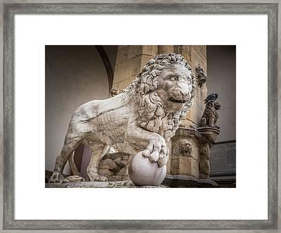 Lion On The Porch Framed Print