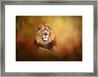 Lion - Pride Of Africa I - Tribute To Cecil Framed Print