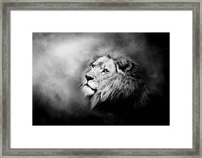 Lion - Pride Of Africa II - Tribute To Cecil In Black And White Framed Print