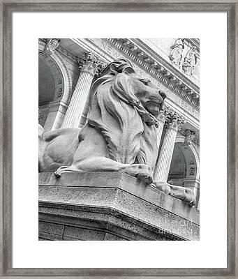 Lion Statue New York Public Library Framed Print by Edward Fielding