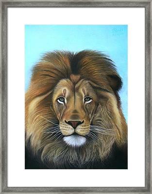 Lion - The Majesty Framed Print