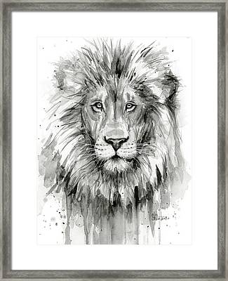 Lion Watercolor  Framed Print by Olga Shvartsur