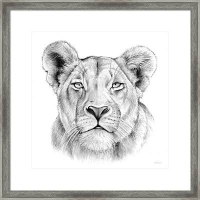 Lioness Framed Print by Greg Joens