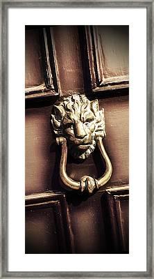 Lion's Den Framed Print