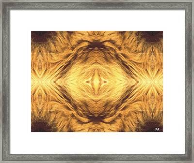 Lion's Eye Framed Print by Maria Watt