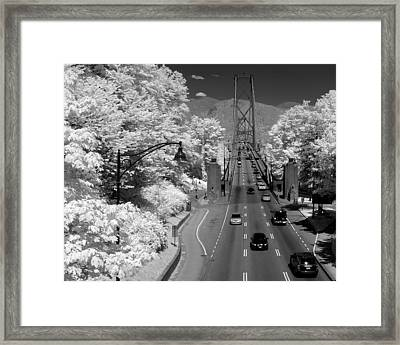 Lions Gate Bridge Summer Framed Print by Bill Kellett