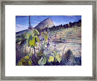 Lions Head From Signal Hill Cape Town  South Africa 2006  Framed Print by Enver Larney