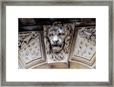 Lions Head Framed Print by Tony Grider