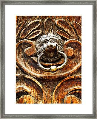 Lion's Jaw Framed Print by Mexicolors Art Photography