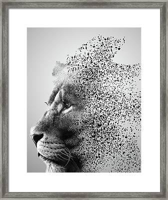 Lions Mind Framed Print