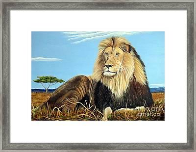 Lions Pride Framed Print
