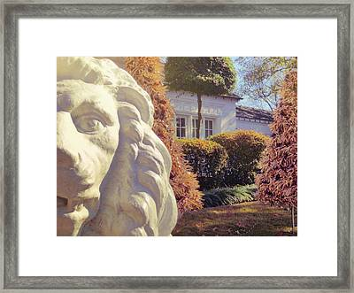 Lions View Of Graceland Framed Print by JAMART Photography