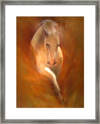 Lipizzaner Framed Print by Elizabeth Silk
