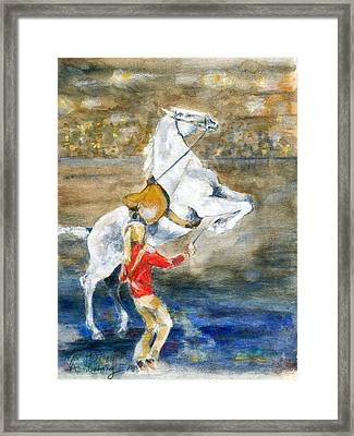 Lippizan Performer Framed Print by Mary Armstrong