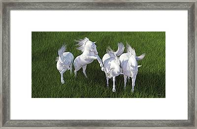 Lippizzaner Fields Framed Print by Betsy Knapp