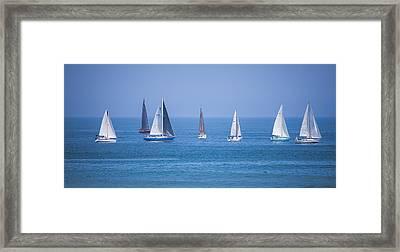 Lipton Cup Framed Print by Ann Flugge