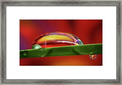 Liquid Fire Framed Print by Gary Yost