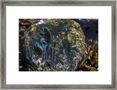 Liquid Mystery Framed Print by Matthew Fredricey