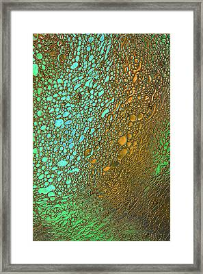 Liquid Turquoise Gold Framed Print by Bruce Pritchett