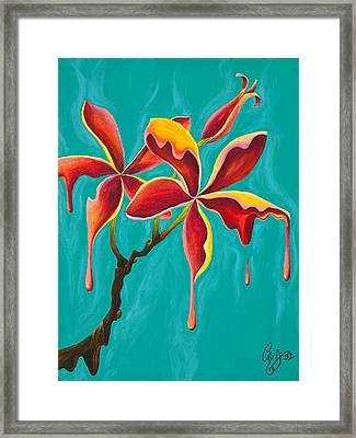 Liquidia Plumeria Framed Print by Chris  Fifty-one