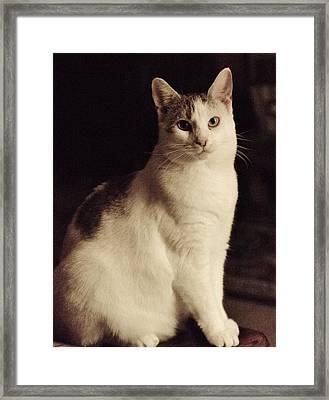 Lisa-lisa Posing Framed Print