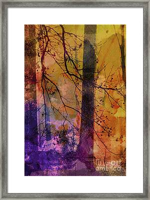 Listen To The Trees Framed Print by Judi Bagwell