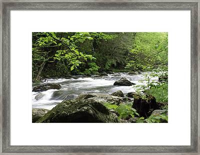 Litltle River 1 Framed Print by Marty Koch