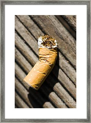 Litter Framed Print by Jorgo Photography - Wall Art Gallery