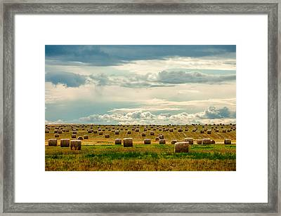Littered With Bales Framed Print by Todd Klassy