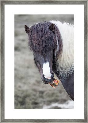 Littering Is Illegal Just Sayin Framed Print