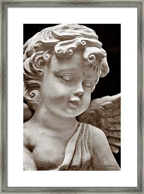 Little Angel - Sepia Framed Print by Christopher Holmes