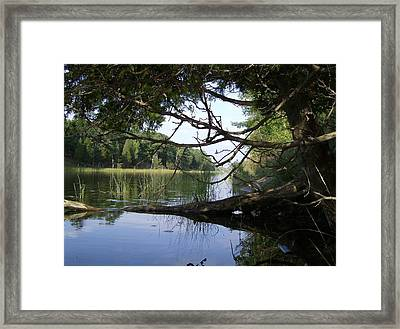 Little Ausable River Framed Print