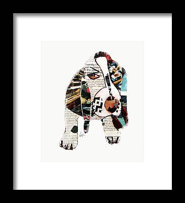Basset Framed Prints