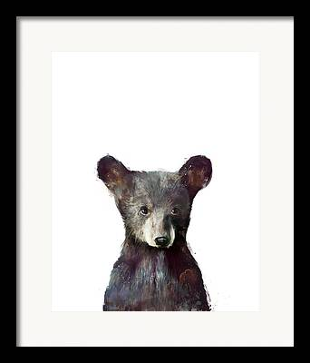 Bear Framed Prints