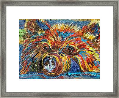 Little Bear Framed Print by Anderson R Moore