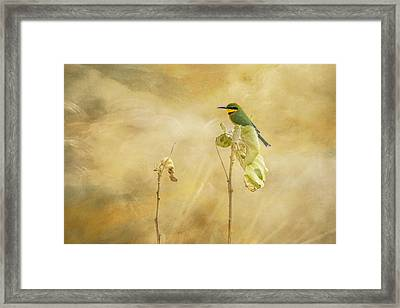Framed Print featuring the tapestry - textile Little Bee-eater by Kathy Adams Clark